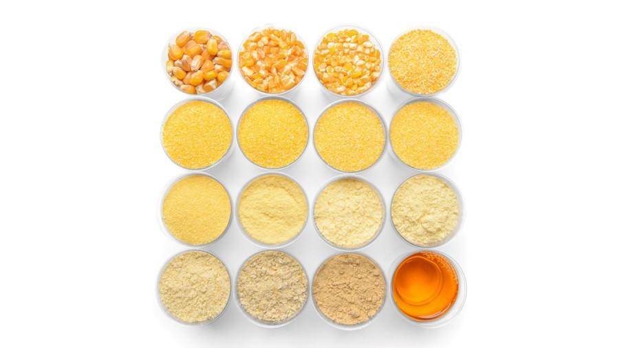 003-corn maize, kalizea, kukurydza, na bialym tle, S19.1